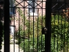 2-35-x-factor-wrought-iron-gate